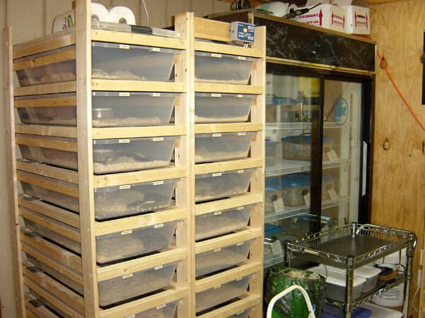Incubator we built for the 2006 hatching season.